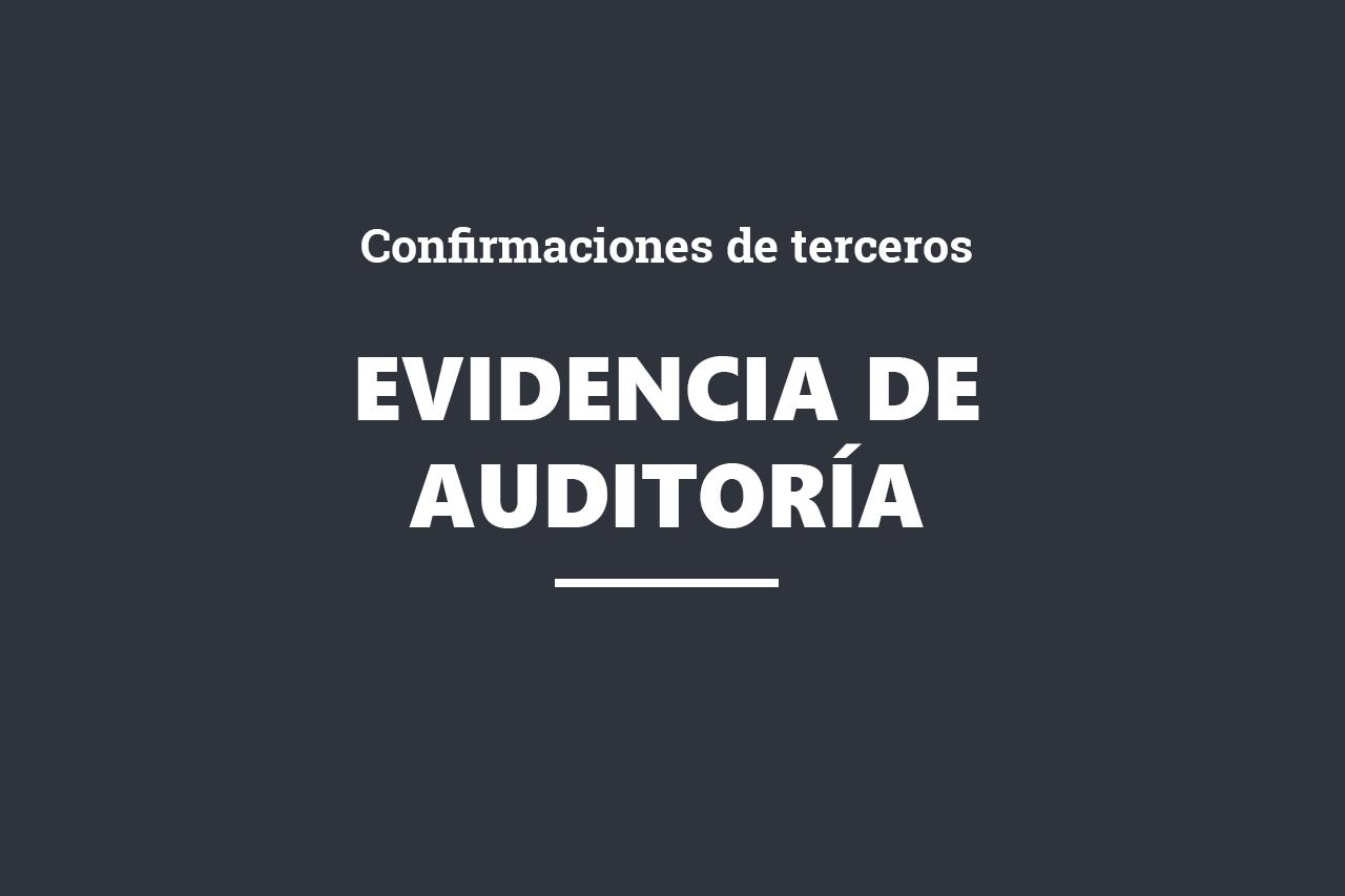 online_evidencia auditoria