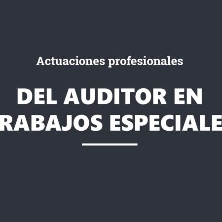 Actuaciones profesionales del auditor en trabajos especiales