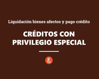 Créditos con privilegio especial. Liquidación bienes afectos y pago crédito. Acción reintegración. Actuaciones realizadas por deudor dentro dos años anteriores declaración de concurso