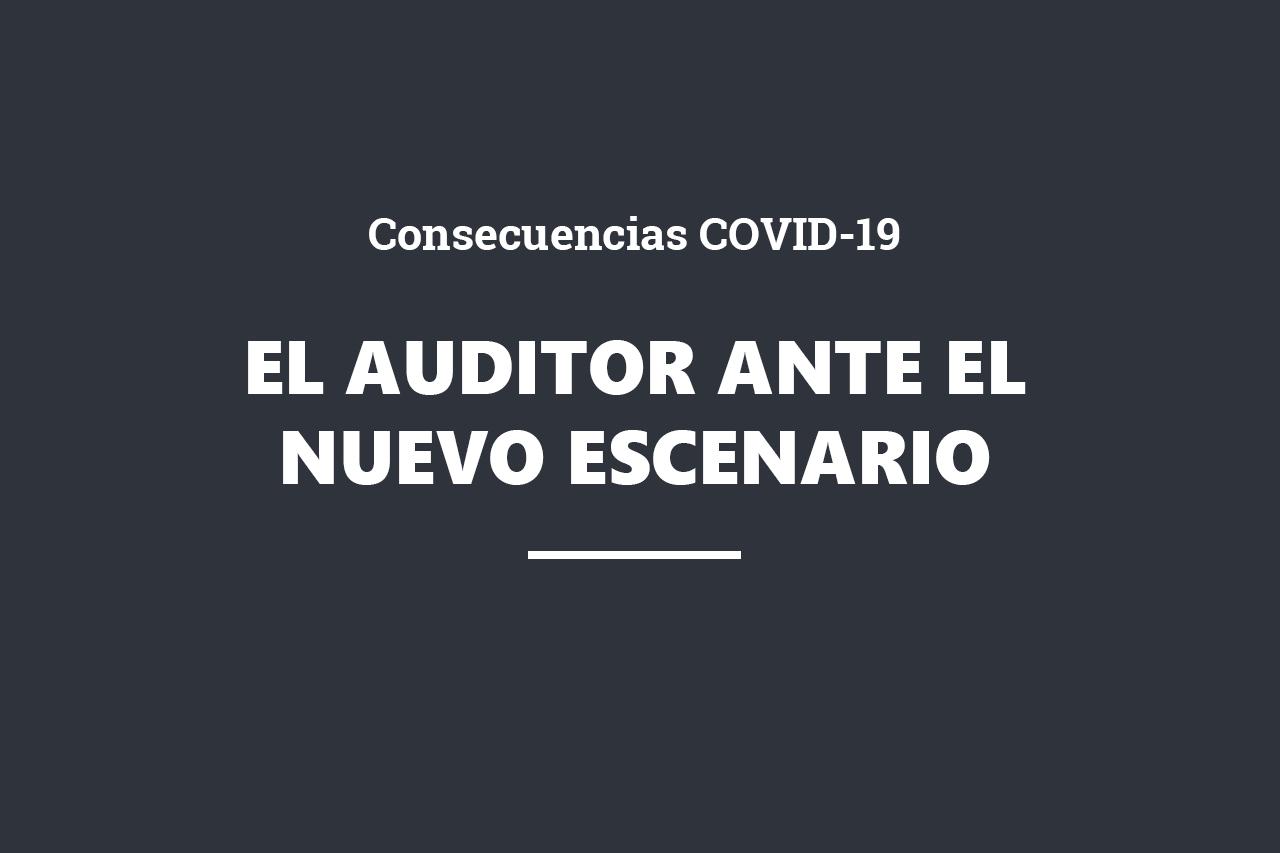 cabecera web_auditor nuevo escenario_2020