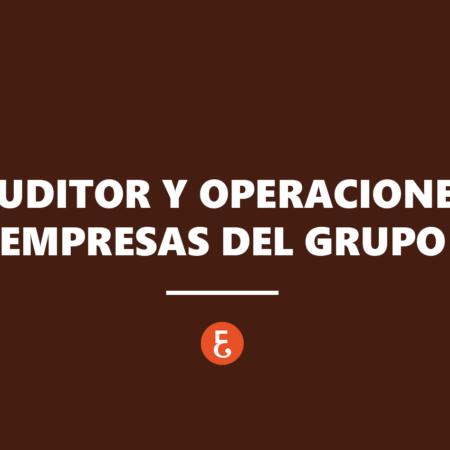 El auditor ante las operaciones entre empresas del grupo