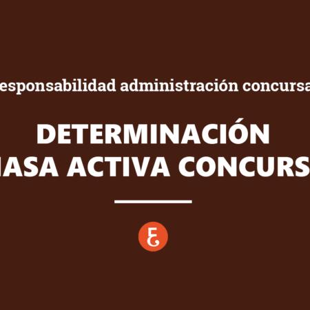 Determinación de la masa activa del concurso y la responsabilidad de la administración concursal. Rendición de cuentas
