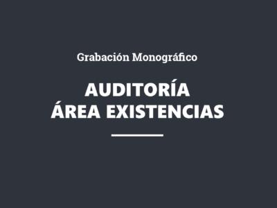 GRABACIÓN. Monográfico sobre auditoría del área de existencias